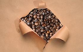 Обои бумага, кофе, зерна