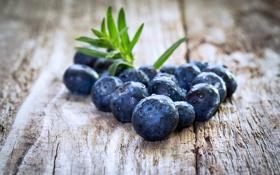 Картинка ягоды, черника, fresh, blueberry, голубика, berries