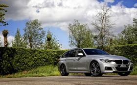 Обои бмв, BMW, универсал, Touring, F31, 330d, 2015