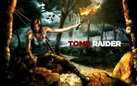 Обои лес, девушка, арт, факел, Tomb Raider
