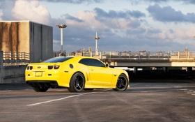 Обои желтый, фонари, парковка, шевроле, вид сзади, chevrolet, yellow