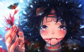 Картинка бабочка, кровь, слёзы, локоны, uchuubranko