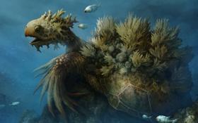 Обои арт, черепаха, рыбка, фентези, океан