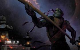 Обои черепаха, Donatello, рисунок, TMNT