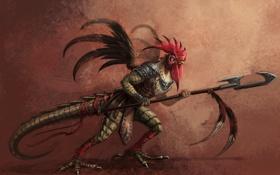 Обои ящер, воин, петух, Кокатрикс, перья, копье