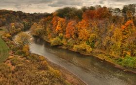 Картинка осень, лес, небо, тучи, река