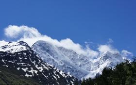 Картинка облака, снег, деревья, природа, гора
