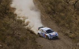 Картинка Авто, Пыль, Спорт, Volkswagen, Мексика, WRC, Rally