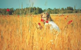 Обои поле, лето, небо, девушка, солнце, цветы, природа