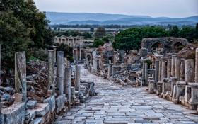 Обои развалины, руины, Турция, колонна, Сельчук, провинция Измир