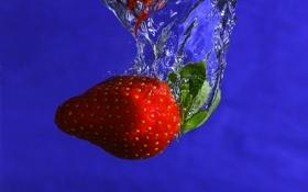 Картинка ягода, пузырьки, клубника, синий, фон, еда, вода