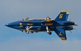 Картинка авиация, самолёты, Blue Angels