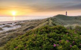 Обои закат, море, маяк, пейзаж