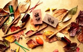 Картинка листья, ягоды, корица, флаконы, барбарис