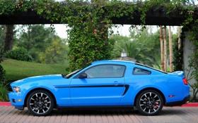 Обои синий, mustang, ford, форд