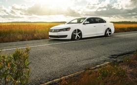 Обои поле, Volkswagen, white, блик, front, Passat