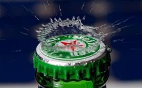 Картинка вода, макро, брызги, бутылка, пиво