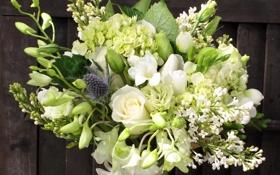 Обои цветы, фото, розы, букет, сирень, фрезия, морозник