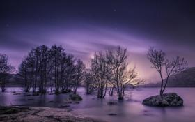 Картинка небо, снег, деревья, пейзаж, ветки, природа