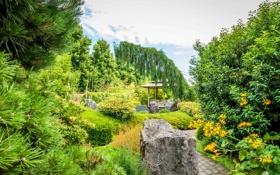 Обои деревья, камни, сад, дорожка, Нидерланды, беседка, кусты