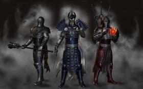 Картинка доспехи, генералы, fanart, The Witcher 3: Wild Hunt, wild hunt