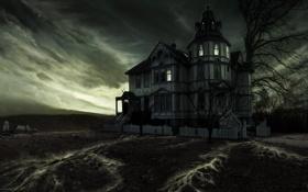 Обои корни, добро пожаловать в мрачный дом, дерево
