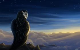 Картинка облака, птица, Rom-Art, Waves of Eternity, art, сова, горы