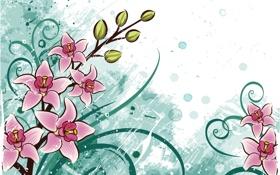 Обои листья, цветы, фон, вектор, лепестки