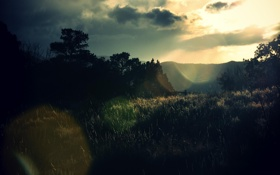 Обои пейзаж, трава, небо, фото, лето, цвета, обои