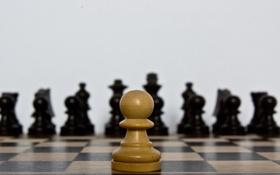 Картинка макро, шахматы, пешка
