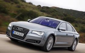 Обои Audi, ауди