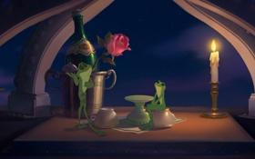 Картинка вино, роза, мультфильм, лягушка, свеча, вечер, парочка