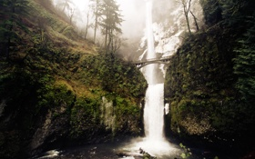 Обои зима, скалы, winter falls, водопад