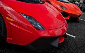 Обои оранжевый, красный, Lamborghini, gallardo, aventador, ламборгини, авентадор