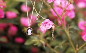 Обои цветы, медальон, кулон, украшение