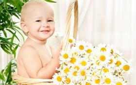 Обои цветы жизни, корзина, улыбки, ромашки, ребёнок, цветы