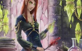 Картинка девушка, эльф, книги, арт, эльфийка, колбы, жезл