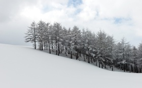 Картинка Winter, Harmony, Korean Landscape