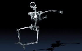 Картинка тень, Рентген, кости, танцует, скелет