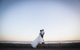 Обои костюм, невеста, белое платье, жених