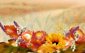 Обои поле, осень, листья, цветы, коллаж