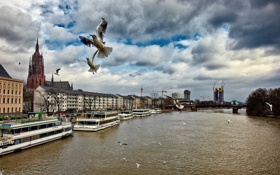 Картинка небо, облака, мост, река, птица, корабль, дома