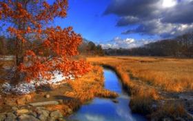 Обои осень, река, hammonasset state park