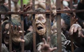 Картинка zombies, rust, The Walking Dead, horde, bars