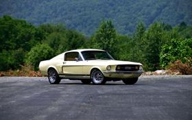 Обои Mustang, Ford, мустанг, форд, 1967, Fastback