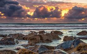 Картинка море, волны, закат, камни, чайки