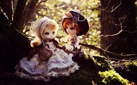 Обои девочки, платья, игрушки, природа, куклы, головные уборы