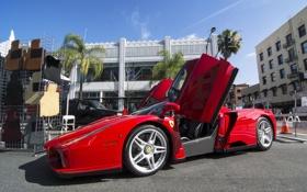 Обои красный, Ferrari, supercar, Enzo Ferrari