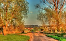 Обои деревья, город, дороги, HDR, Германия, Hungen