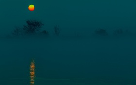 Обои небо, вода, деревья, туман, луна
